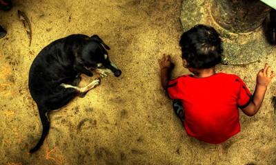A Dachshund with my nephew Kavith
