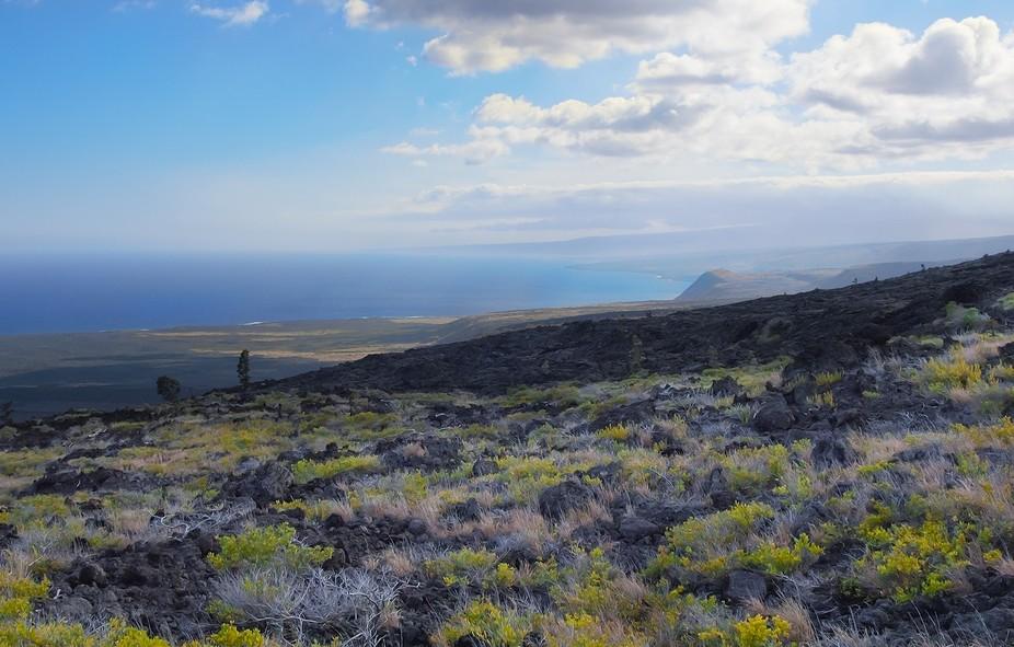Lava field on big island Hawaii