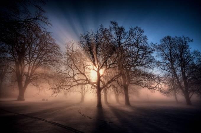 Foggy morning by zenabiz - My Best Shot Photo Contest Vol 2