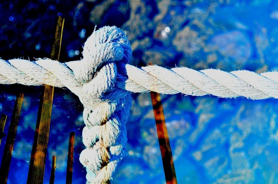 jetty\'s knot