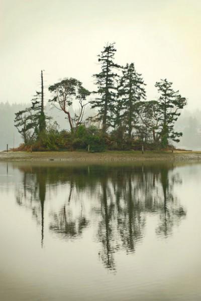 Little Island- Puget Sound WA