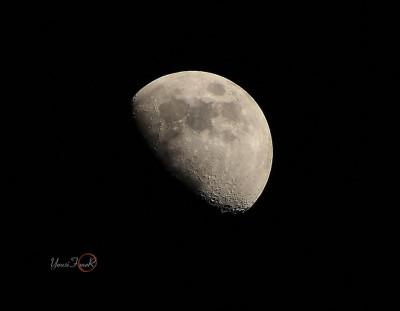 Moon Of Zy al7ja
