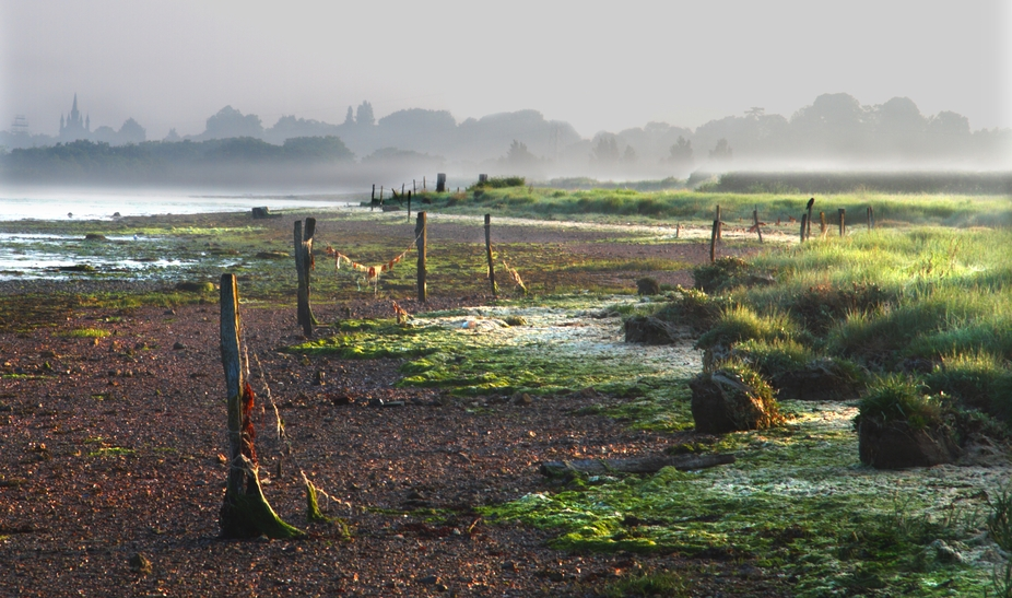 A picture of a beach early in the morning complete with early morning mist