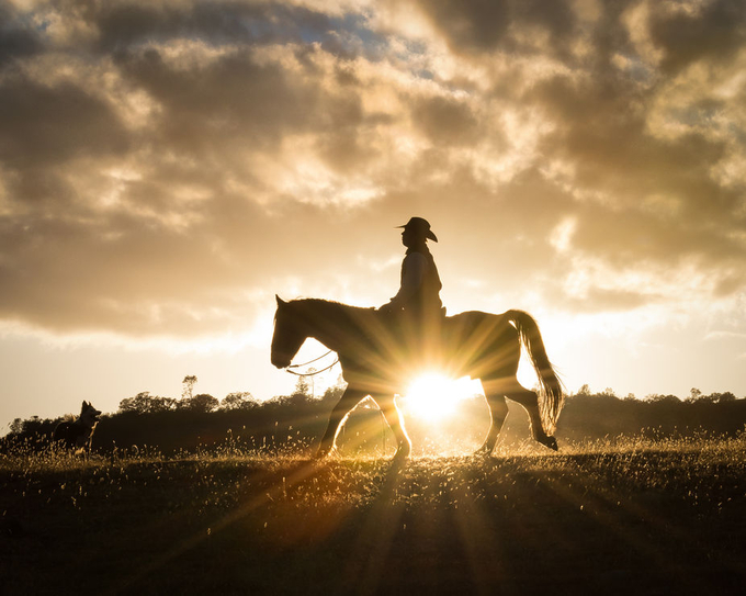 Sunburst Cowboy by Avi-Avivi - Sun Flares Photo Contest