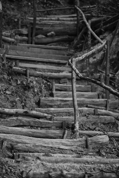rustic stairs