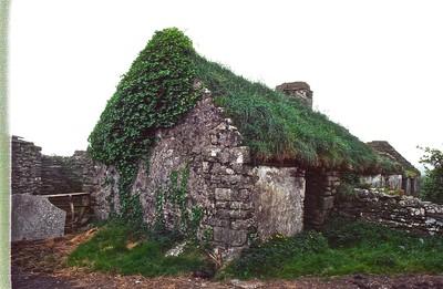 Irish Sod House