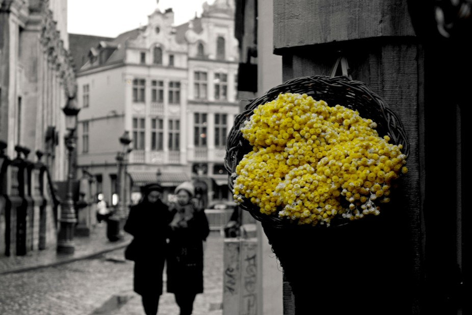 Hope / Yellow