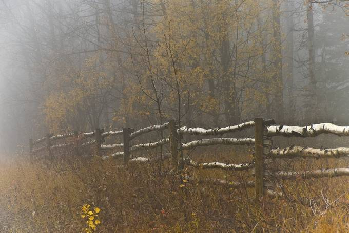 Country Fence by Peaceofthenorth - Fences Photo Contest