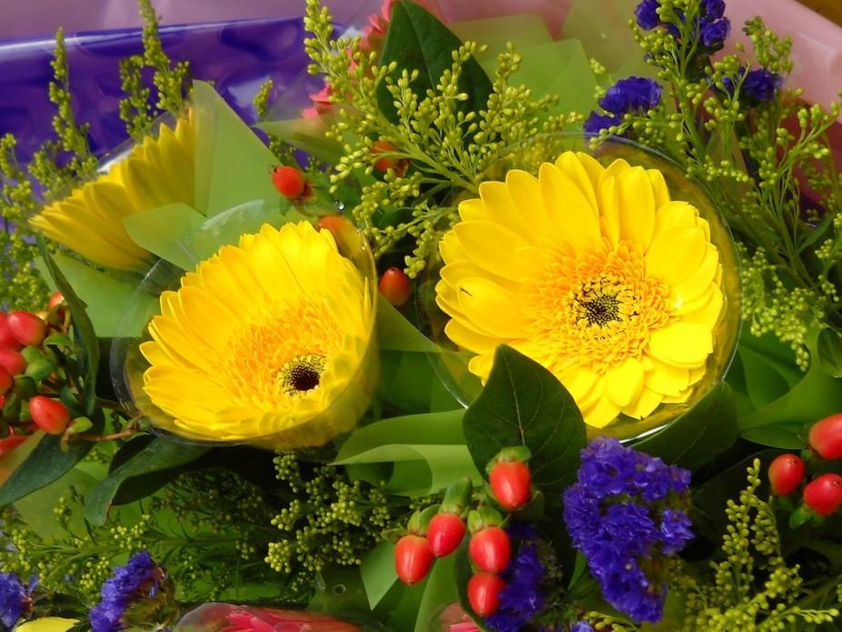 Beautiful yellow blossom Gerbera in the market.
