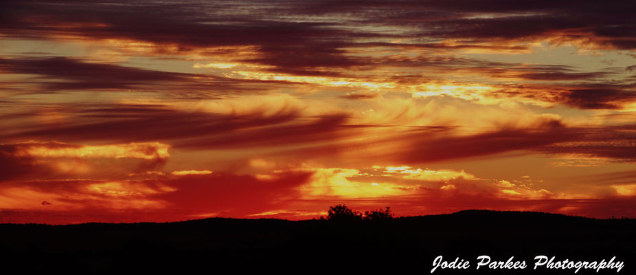 sunset boggy 16