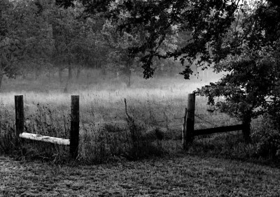 Old Fence on a Foggy Morning