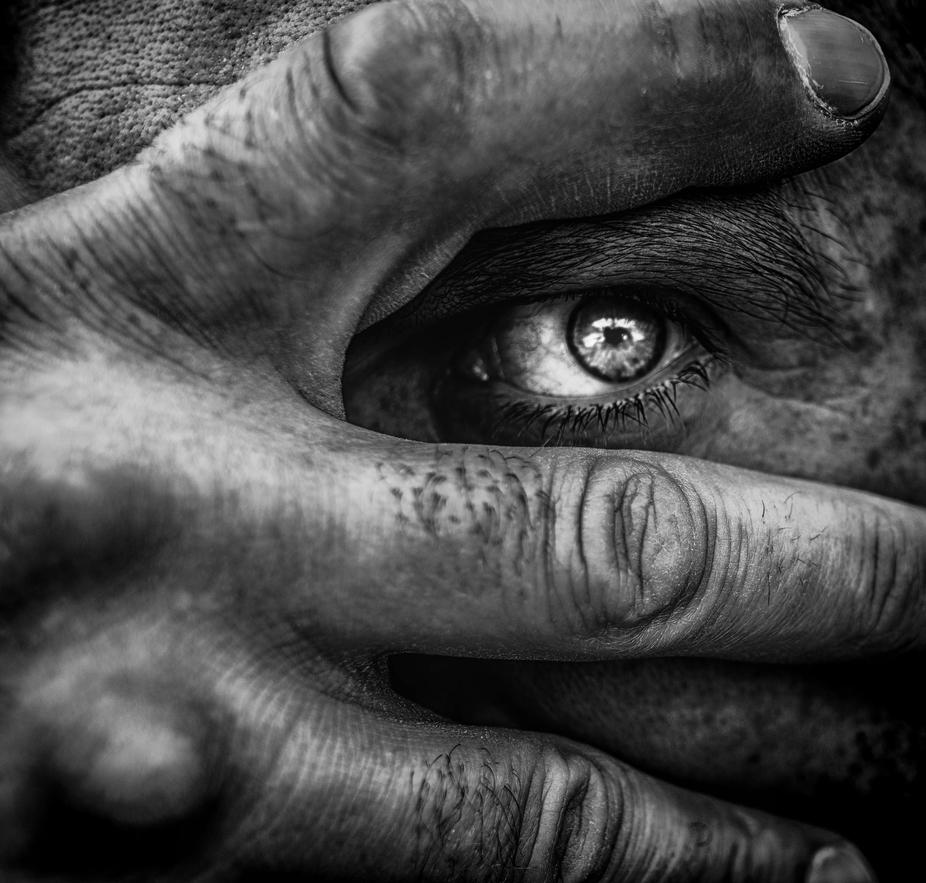 Eye of the Insane ....