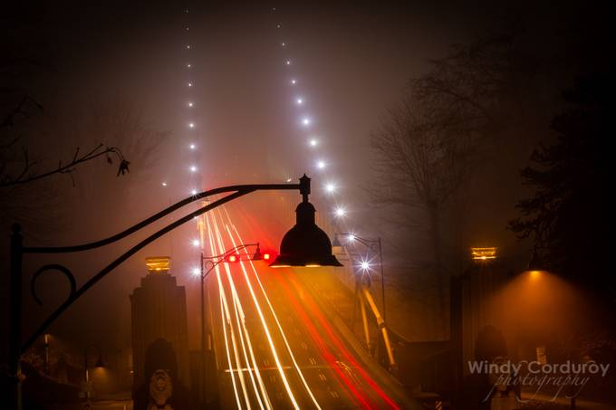 The Beauty of Fog by windycorduroy - Lost In The Fog Photo Contest