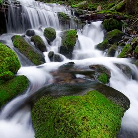 A small stream found next to the famous Sol Duc falls in Washington state. This is a 7 image focus stacked image for maximum clarity from front t...