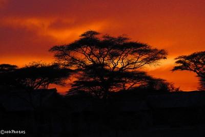 AFRICA_2012-92