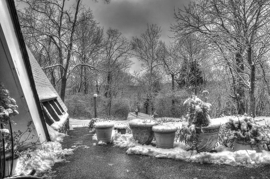 Black White Snow