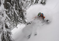 Deep Powder