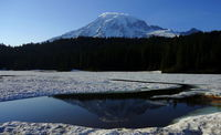 Rainier Reflected