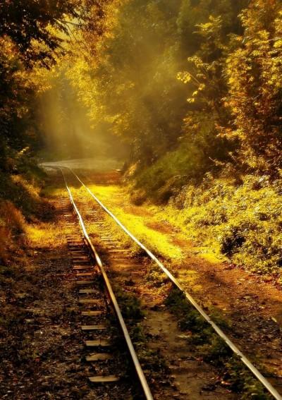 Sunlight track
