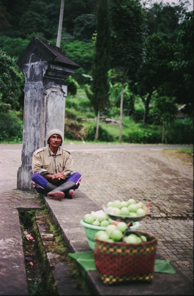 The Man Who Sell Guavas