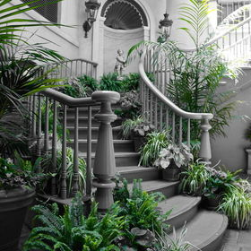 Black and white with selective coloring of a Grand Staircase at New Orleans Square in Disneyland Park, Anaheim, CA.