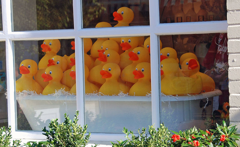 This window display in a home accessories store stopped me in my tracks - so cheerful and colorfu...