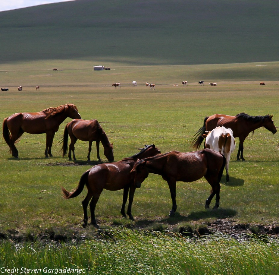beautiful nature in Inner Mongolia