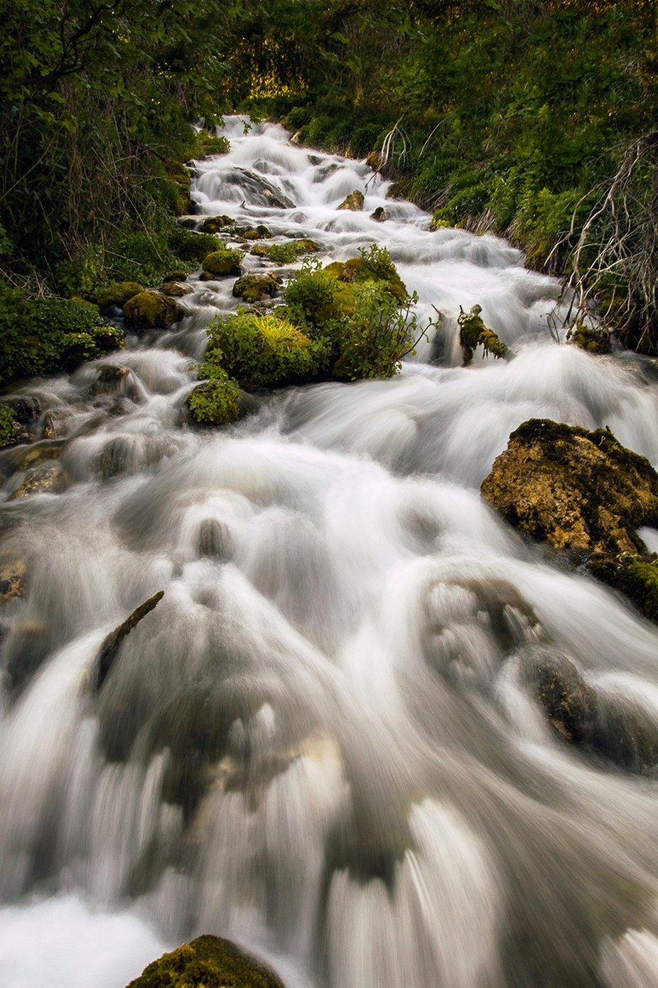 Water by tomato1236 - Streams In Nature Photo Contest