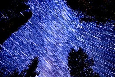 Star trails in Sequoia National Forest