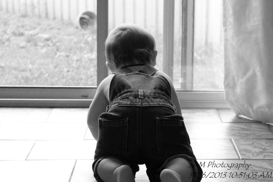 Wondering Where Mummy is!