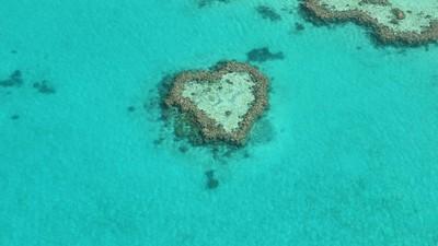 Heart in the ocean