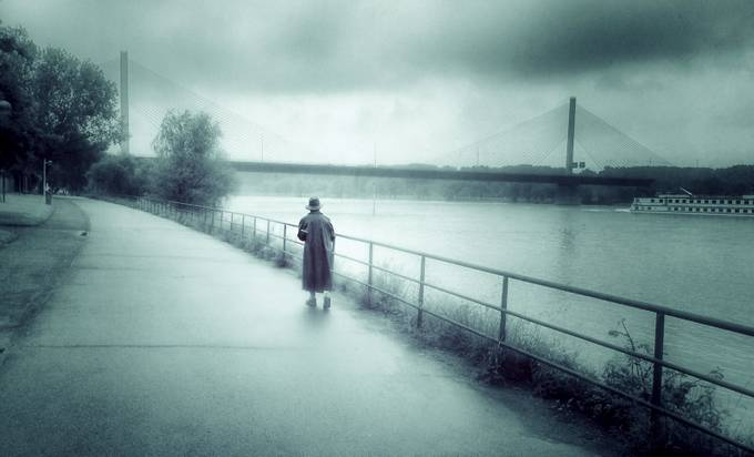 The Walk by browna - A Walk In The Mist Photo Contest
