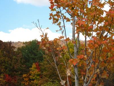 Pennsylvania mountains in the fall