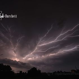 Scary, crazy, cool lightning show out my backdoor last week.