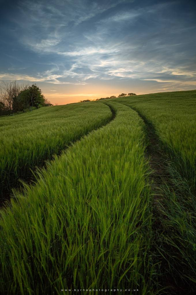 Green Fields Sunset by byrnephotography - Twisted Lines Photo Contest