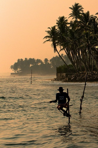 Stilt  fisherman