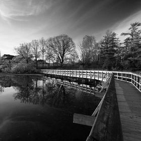 Mill Pond Reflection in B&W