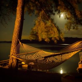 A peaceful midnight resting place overlooking Douglas Lake, TN.