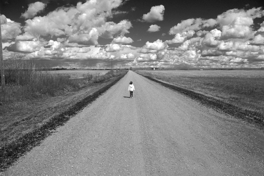 Katherine wanders down a township road in Alberta.