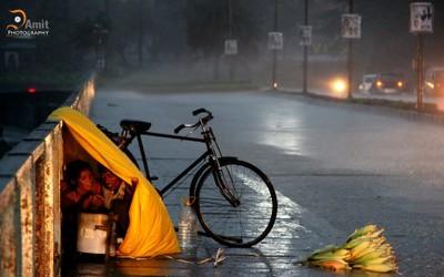 shelter is matter