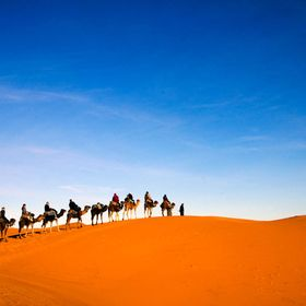 A shot from my trip to Morocco a couple of years ago. This one was taken in the Erg Chebbi sand dunes on the western edge of the Sahara Desert. Y...