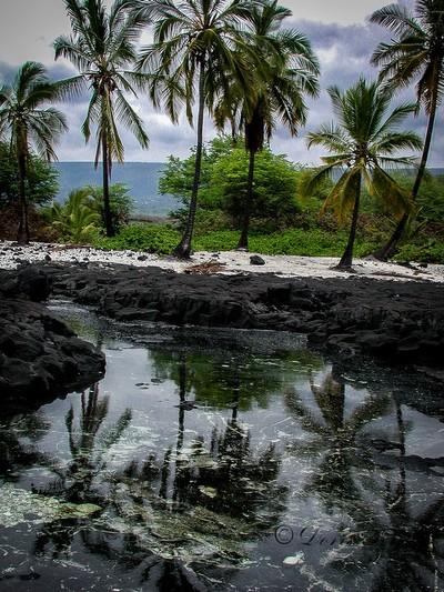 Hawaii-reflection-
