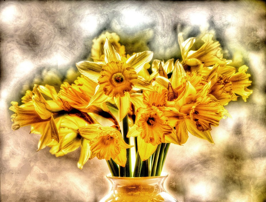 My still life shot of some Daffs we had in a vase. I know I should have had the whole vase in the...