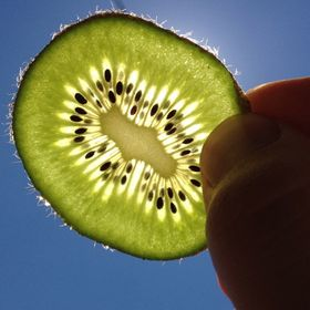 Kiwi slices are actually kind of beautiful.