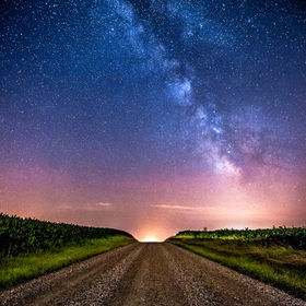 A gravel road runs through a corn field and leads to the an amazing summer night sky.