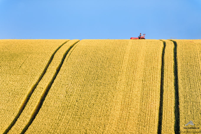 Red tractor by thomaskast - Farming Photo Contest
