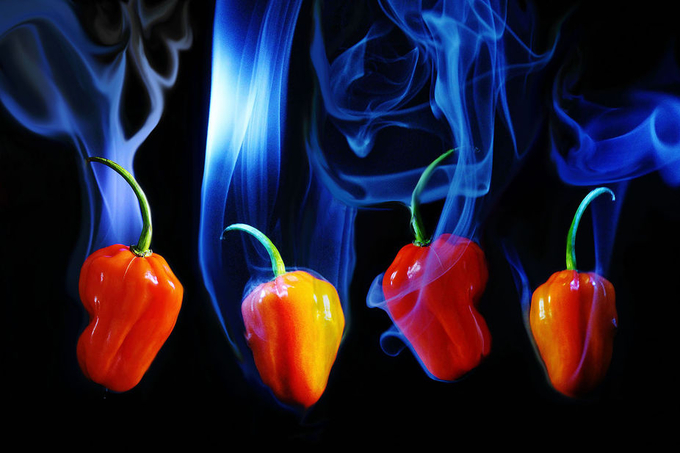 Hot Chillies by AngieB - Playing With Light Photo Contest