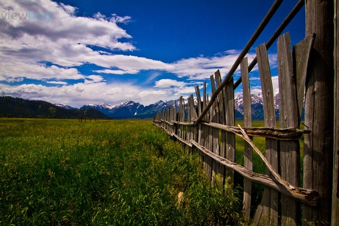 Fences by billndotnet - Meadows Photo Contest