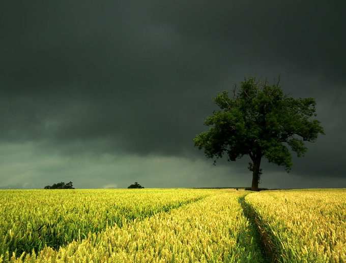 grey skies by scruffyherbert - A Storm Is Coming Photo Contest