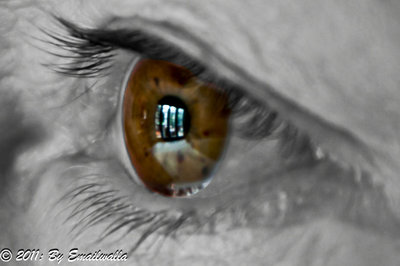 I See Everything-2
